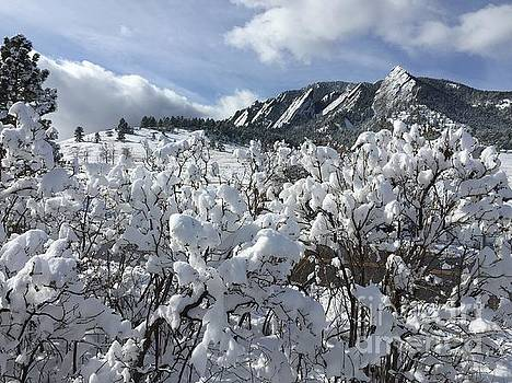 Winter beauty and flatirons by R Mahlouji