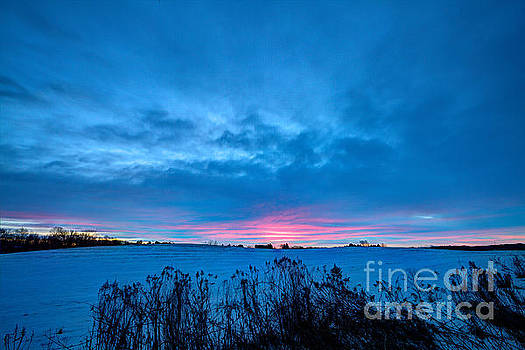 Winter Blues With A Hint of Pink by Wayne Moran