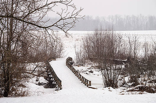 Winter Bridge by Andrew Kazmierski