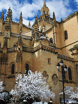 Winter Cathedral by Jessica Myscofski