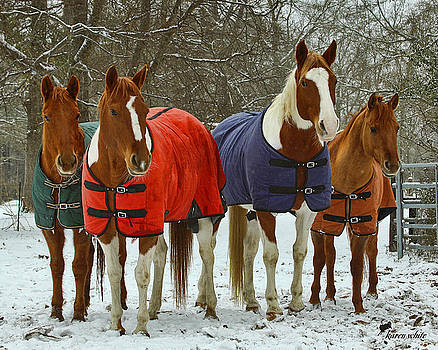 Winter Coats by Karen White