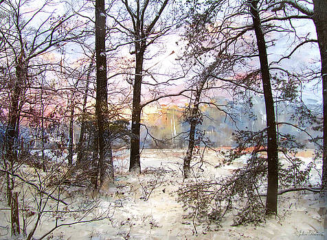Winter Forest by John Rivera