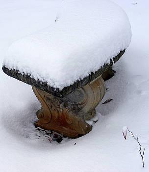 Winter hope by Elena Tudor