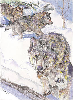 Winter Hunt by Carol Jobe