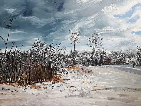 Winter II by Kateryna Kurylo