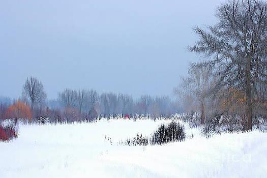 Winter Illusion by Marcel  J Goetz  Sr