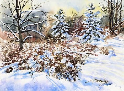 Winter in Blackburn Hamlet by Jack Tzekov
