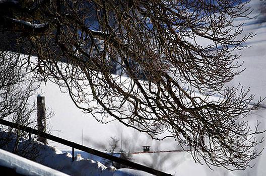 Susanne Van Hulst - Winter in Switzerland - Snowy Path