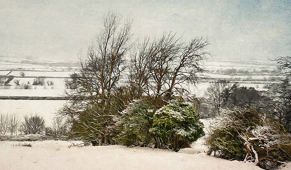 Winter in the Valley. by ShabbyChic fine art Photography