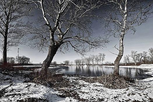 Winter lake by Zoltan Nemes 'mettor'