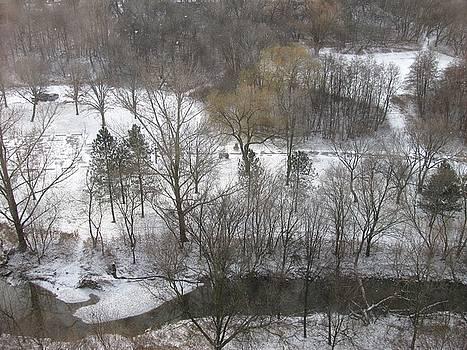 Alfred Ng - winter landscape