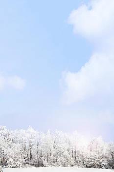 Winter Landscape by Stephanie Frey