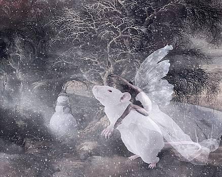 Winter Madness by Terry Fleckney
