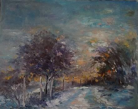 Winter magical night  by Natalia Bardi