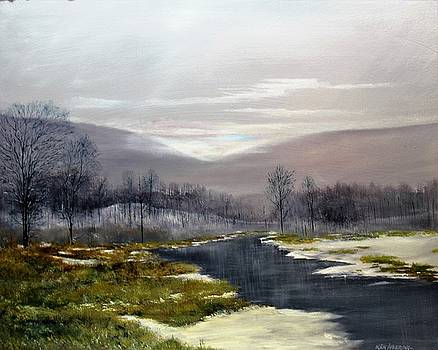 Winter Marsh by Ken Ahlering