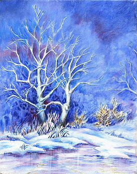 Winter by Mary Lillian White