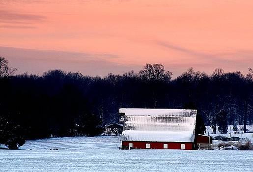 Diane Merkle - Winter Morn