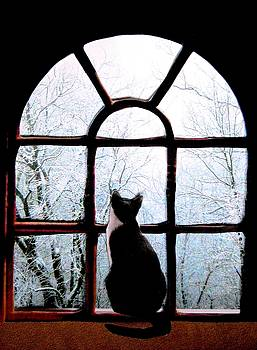 Winter Musing by Angela Davies