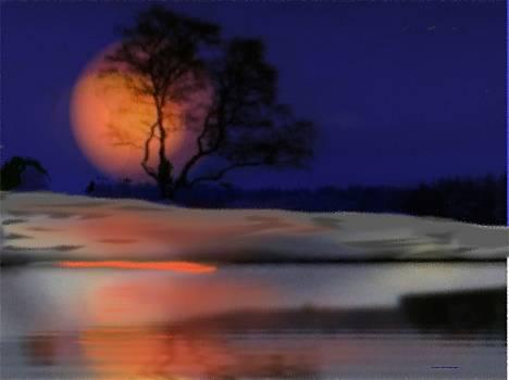 Winter night by Dr Loifer Vladimir