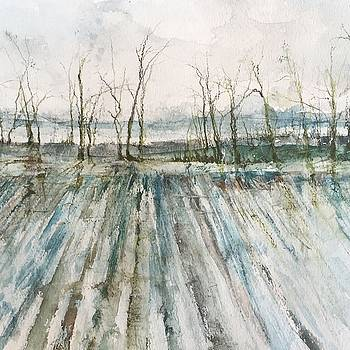 Winter On the Delta by Robin Miller-Bookhout