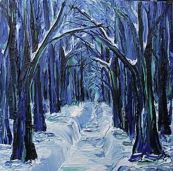 Winter by Paula  Heffel