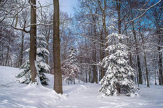 Jenny Rainbow - Winter Perfection