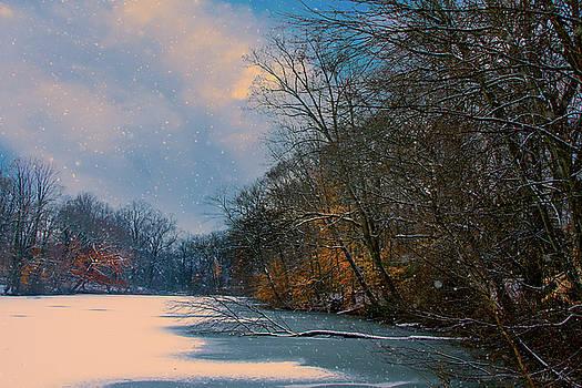 Winter Pond by John Rivera