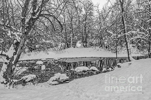 Winter Reflections in a Creek by Sue Smith