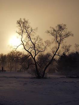 Winter 'Rise by Toni Jackson