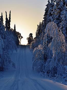 Winter road by Peder Lundkvist