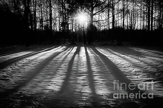 Winter Shadows landscape photo by Melissa Fague