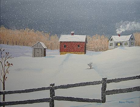 Winter Snowstorm by Norm Starks