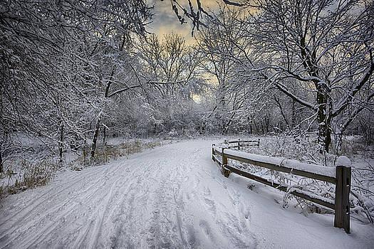 Winter Sunrise by Sebastian Musial