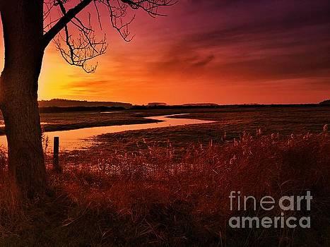 Winter Sunset at Holkham by John Edwards