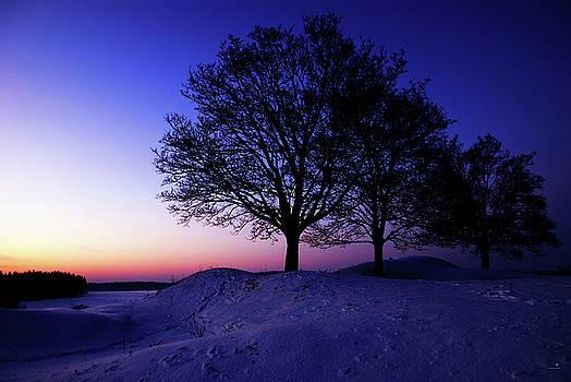 Hannes Cmarits - winter sunset