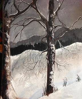 Winter trees by Kathy Othon