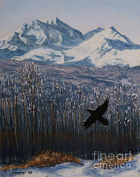 Stanza Widen - Winter Valley Raven