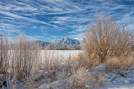 Winter View of Jobes Peak - Gardnerville - Nevada by Bruce Friedman