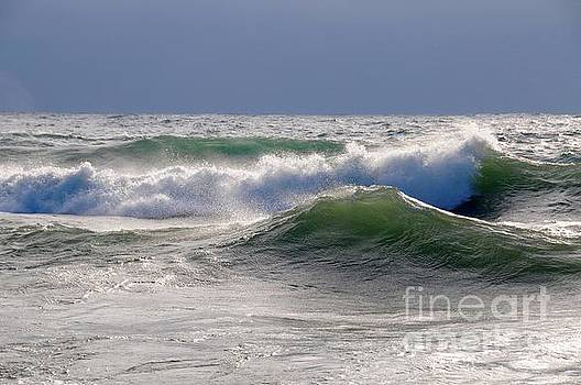 Winter Waves by Sandra Updyke