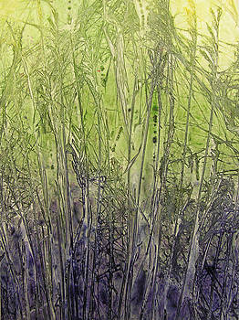 Winter Wheat by Karla Horst