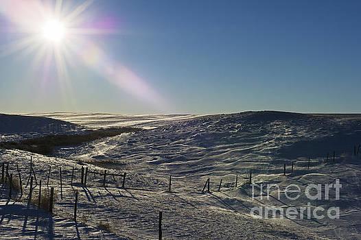 Winter Wonderland Blues.. by Nina Stavlund