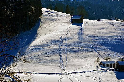 Susanne Van Hulst - Winter Wonderland in Switzerland - Tracks in the snow