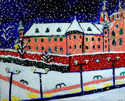 Winter Wonderland Kazimierz by Ted Hebbler