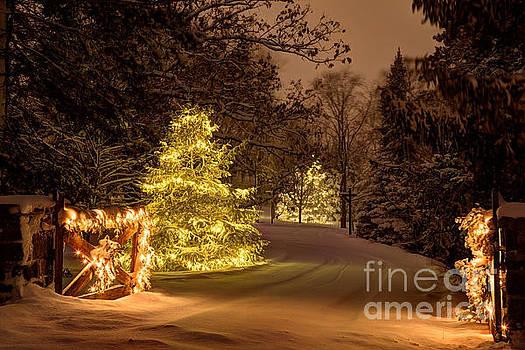 Winter Wonderland Minnesota by Wayne Moran