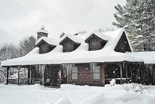 Winter Wonderland by Pat Carosone