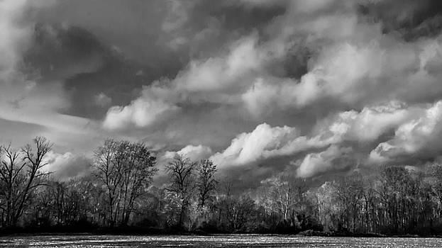 Winter's Arrival by Larry Goss