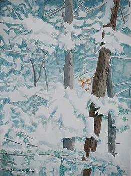 Winter's Art by Robert P Hedden