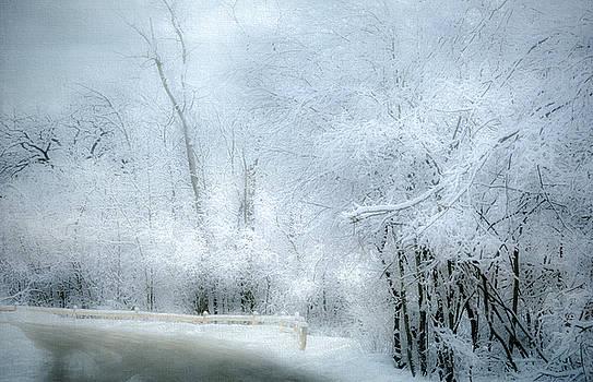 Julie Palencia - Winters Dreamy Landscape