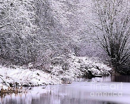 Winters First Icy breath by Baggieoldboy