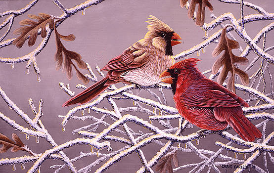 Winter's Gift - Cardinals by Craig Carlson
